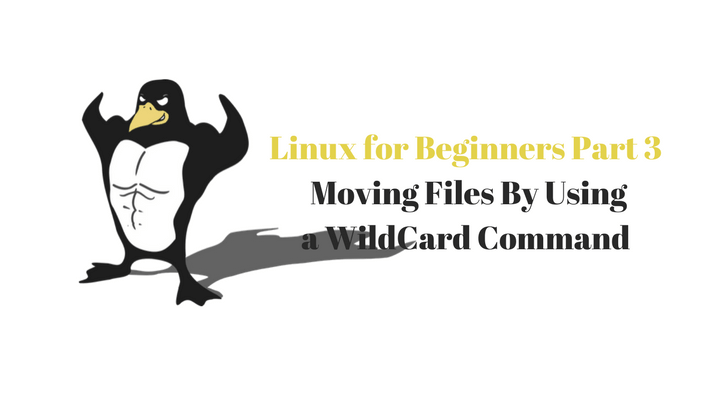 Linux For Beginners Part 3 Main Logo