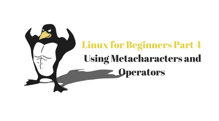 Linux for Beginners Part 4 (Using Metacharacters and Operators)