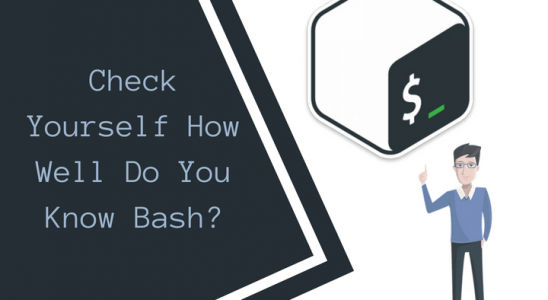 Check Yourself How Well Do You Know Bash Main Logo (1)