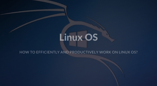 How to efficiently and productively work on Linux OS
